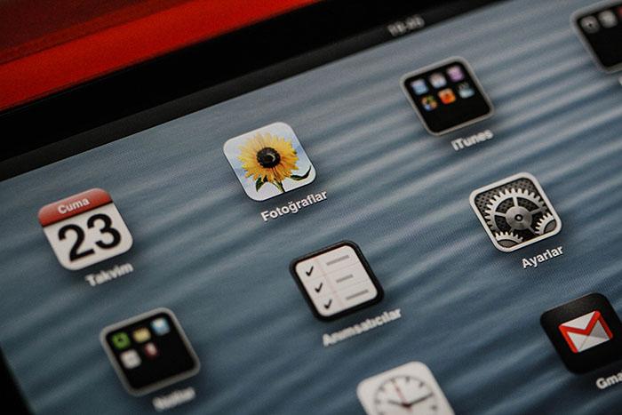 iPad Mini Ekranı